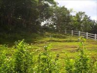 TANDAY CORELLA, BOHOL Residential Lot for Sale