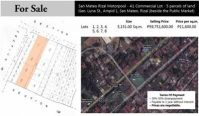 5151 sqm Commercial Lot For Sale at Ampid 1 San Mateo