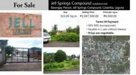 Jell Springs Subdivision Lot for Sale Pansol Laguna