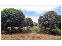 Brgy. Pulo, San Rafael, Bulacan Lot For Sale