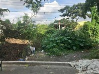 Kingspoint, Novaliches, Quezon City Lot For Sale