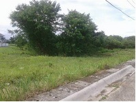 Pacific Grand Villa Lapu Lapu City Cebu Vacant Lot For Sale