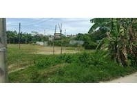 Pagutlan, Tayud, Consolacion, Cebu Vacant Lot For Sale