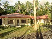 Albuera, Leyte Beach House & Lot for Sale 021912